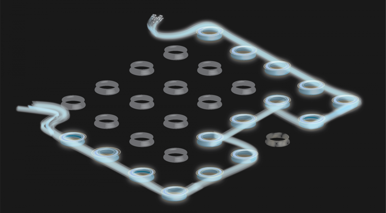 Photonic edge state in 2D array of transistors, E. Edwards, JQI